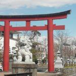 鎌倉散歩 桜 2020年3月6日
